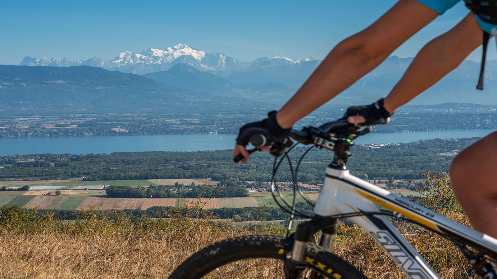 Location de VTT et vélos