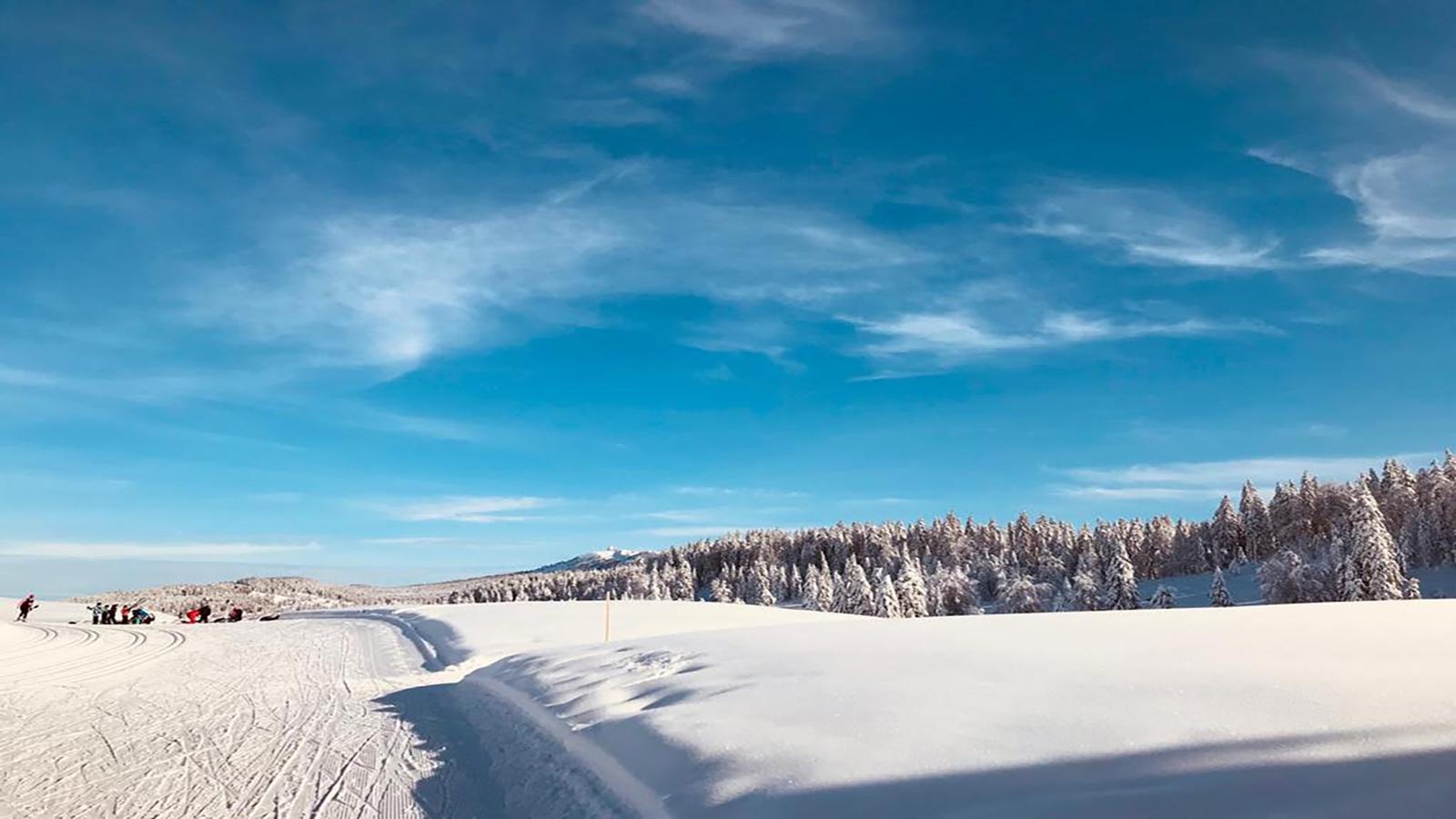Sortie ski de fond pour tous !