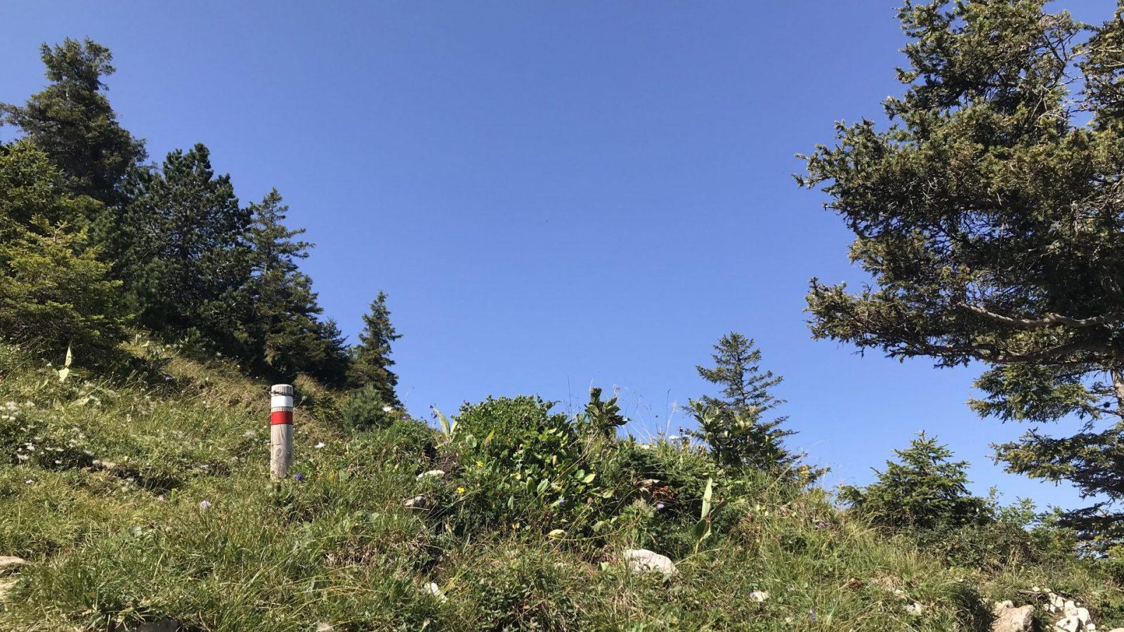 Conseils et astuces avant de partir en randonnée