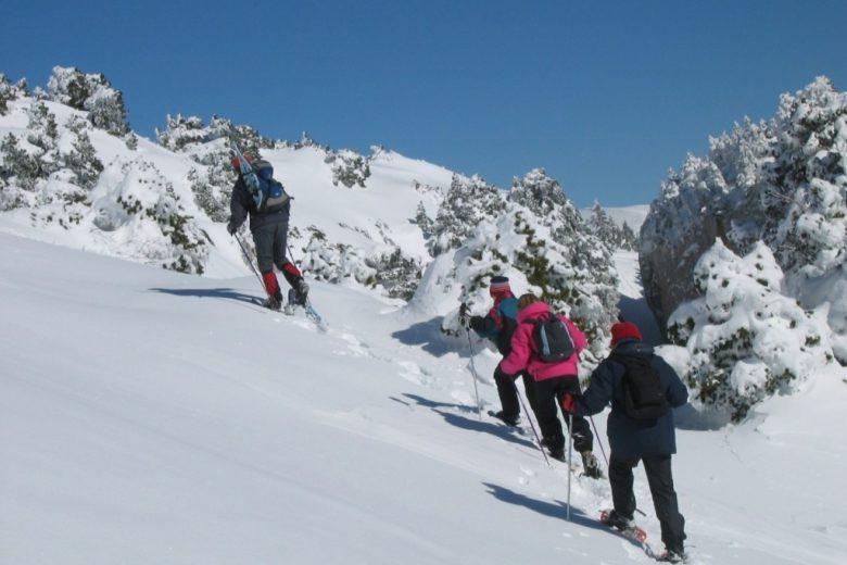 Vers le Crêt de la Neige avec Francis