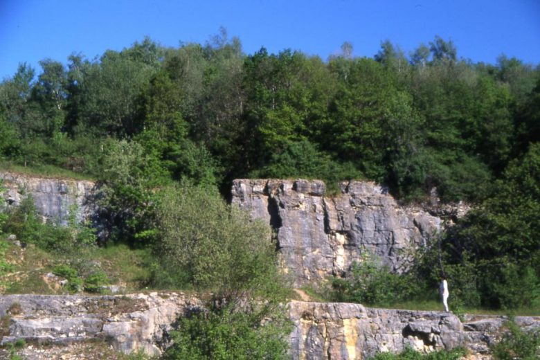 Mur d'escalade de Vesancy