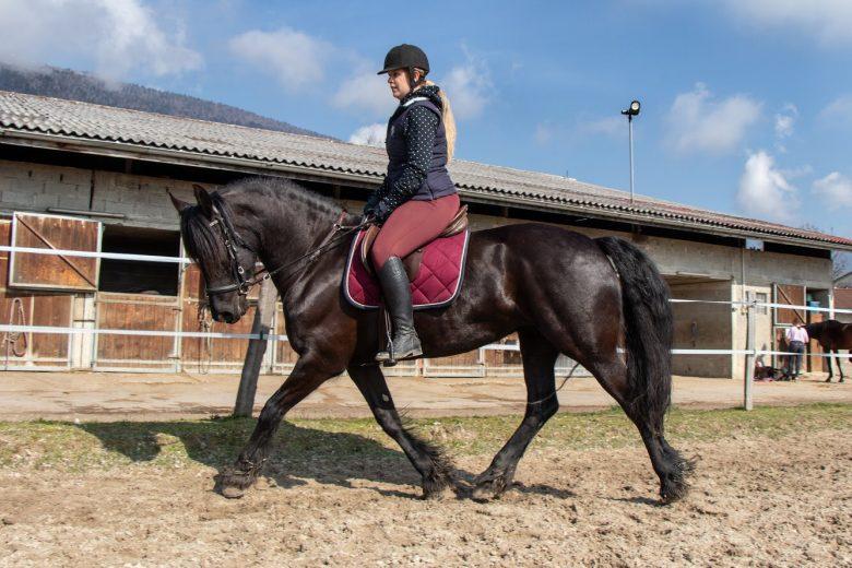 Varfeuil_equitation
